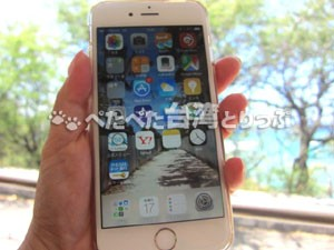 iPhone6で海外パケット定額サービス(ドコモ・au・ソフトバンク)