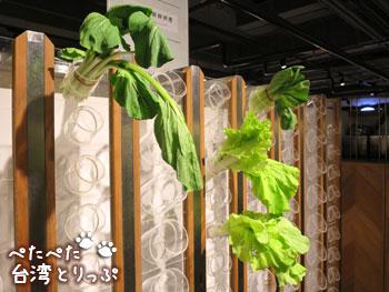 誠品生活南西店フードコート「VEGE GREEK」の食材(青菜)